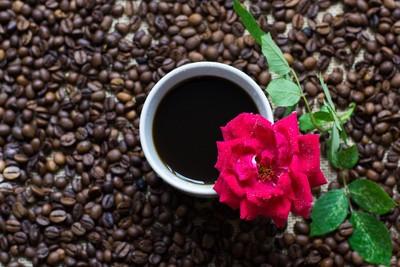 喝茶叶 - 常喝茶叶茶的人会怎样