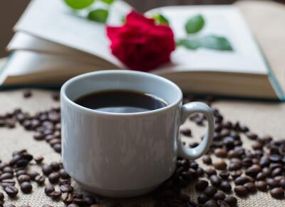 单枞茶怎么念 - 单丛茶的读音是什么